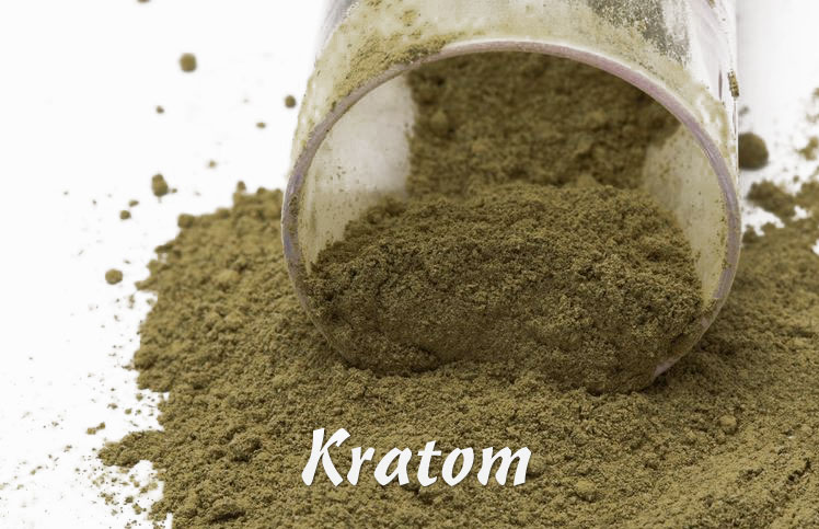 Herbal Salvation Kratom Extract Review Conestoga